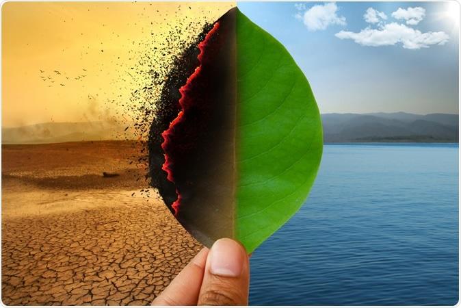 Climate change. Image Credit: Piyaset / Shutterstock