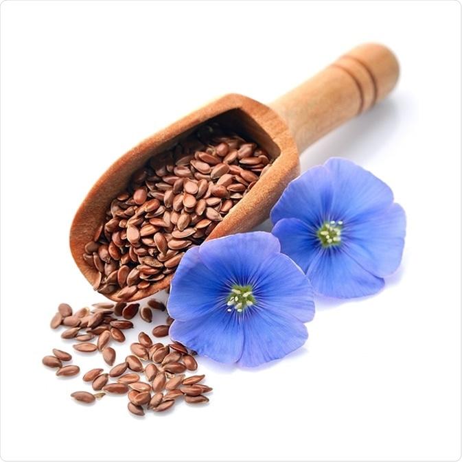 La semilla de lino y el lino florecen - haber de imagen: Volosina/Shutterstock