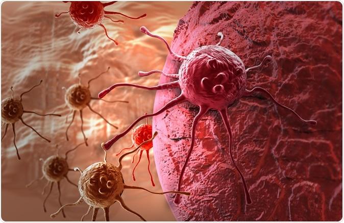 Cancer cell Illustration. Image Credit: Jovan Vitanovski / Shutterstock