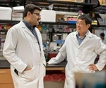 Thioredoxin antioxidant could soon be used to improve cancer treatment