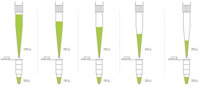 Repetitive pipetting by Andrew robot to dispense equal volume into multiple destinations from a single aspiration
