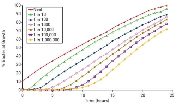 Growth of serially diluted cultures of Neisseria meningitidis in BHI broth supplemented with 10 % FBS using a BMG LABTECH plate reader with ACU set to deliver 5 % CO2 at 37°C. The data presented were calculated from triplicate optical density readings (at 405nm) taken hourly over a 24 h period from duplicate experiments.