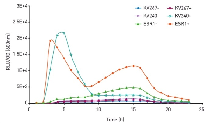 Normalized bioluminescence of V. fi scheri strains. Bacteria were either supplemented with exogenous HSL (+) or not (-). Insert shows growth curves
