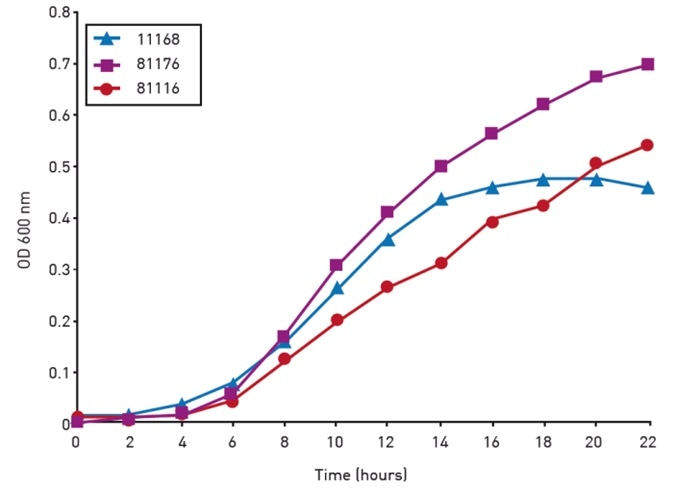 Growth of Campylobacter isolates over a 24 hour period in the FLUOstar® Omega.