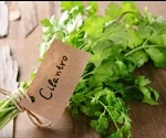 Why cilantro (coriander) is good for your health