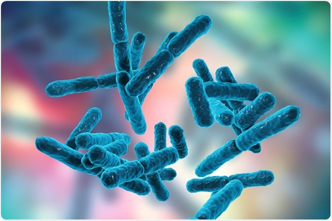 Bacteria Bifidobacterium, gram-positive anaerobic rod-shaped bacteria which are part of normal flora of human intestine are used as probiotics and in yoghurt production. 3D illustration Credit: Kateryna Kon / Shutterstock