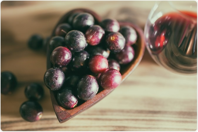 Moderate daily dose of resveratrol alleviates muscle deconditioning in Martian gravity analog. Image Credit: Aimee M Lee