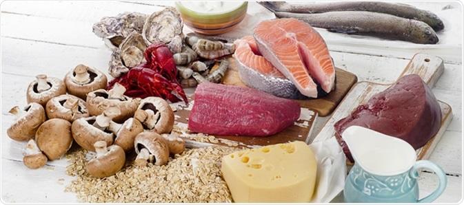Alimentos da vitamina B12 (cobalamina). Crédito de imagem: bitt24/Shutterstock