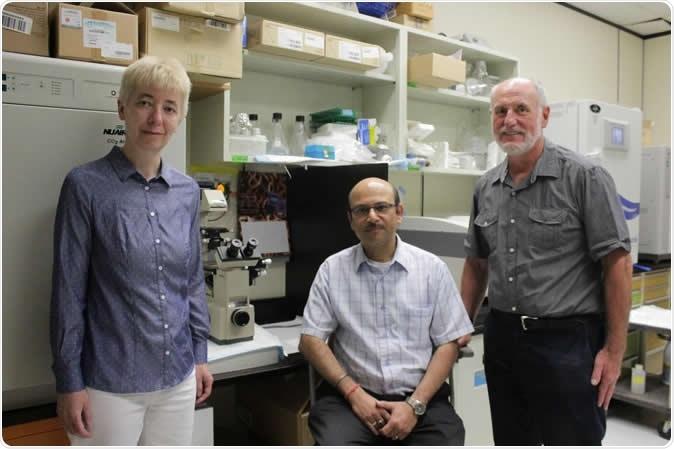 (De izquierda) los investigadores Barbara Knoblach, Hiren Banerjee y Rick Rachubinski ahora están utilizando su descubrimiento para determinar las drogas nuevas, menos tóxicas para tratar las enfermedades tropicales descuidadas que afectan a millones en África y Suramérica. Haber de imagen: Ryan O