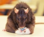 Obesity associated with reduced taste sensation