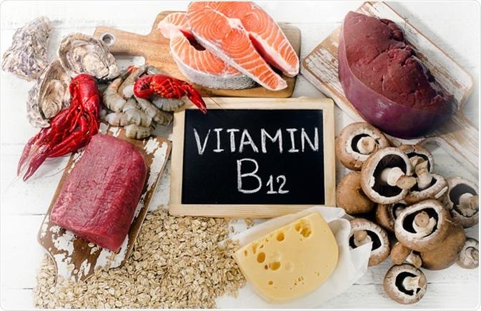 Sources of Vitamin B12 (Cobalamin). Image Credit: Bitt24 / Shutterstock