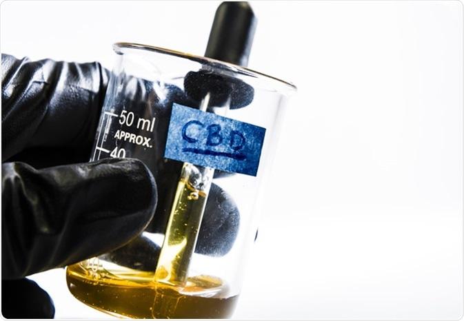 Estratto del petrolio di CBD dalla cannabis. Credito di immagine: Mitch m./Shutterstock