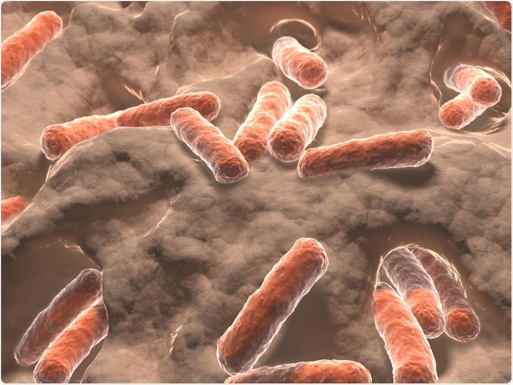 Microbiome de la tripa