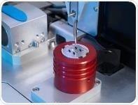 la pinzette del camaleonte che prende una griglia della stagnola per la campione-preparazione della proteina