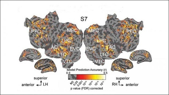 Nearly identical brain activity is evoked from processing written or spoken words