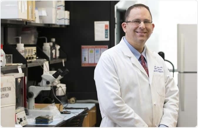 Joshua Lipschutz, M.D., director da divisão da nefrologia na universidade de South Carolina médica, é um dos autores superiores do artigo da circulação. Crédito de imagem: Bloco de Sarah, universidade de South Carolina médica