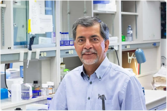 U of A neurologist Jack Jhamandas led a team that found a new treatment significantly improved memory in mice with Alzheimer