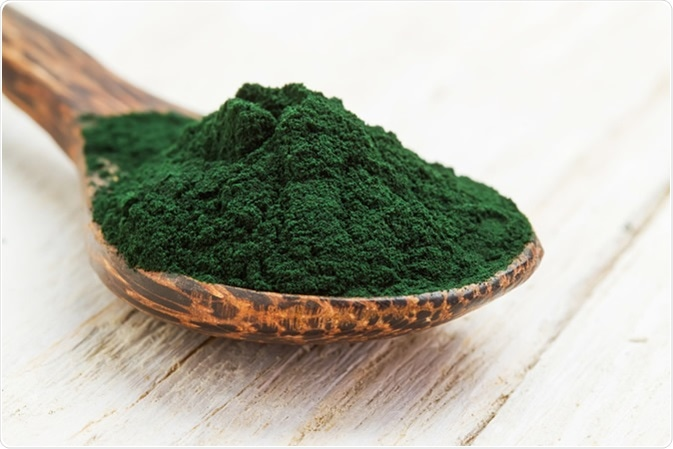 Closeup of an organic spirulina algae powder in a wooden spoon. Image Credit: Dmitry Zimin / Shutterstock