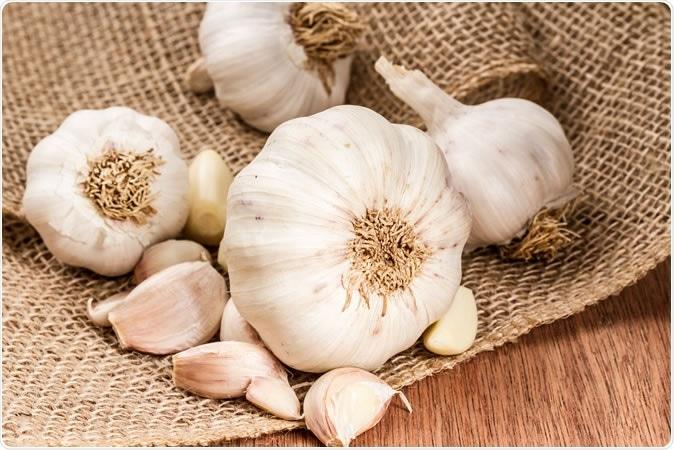 Garlic bulbs with garlic cloves. Image Credit: spicyPXL / Shutterstock