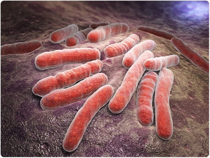 Mycobacterium tuberculosis is a pathogenic bacterial species in the family Mycobacteriaceae and the causative agent of most cases of tuberculosis - Illustration Credit: Tatiana Shepeleva / Shutterstock