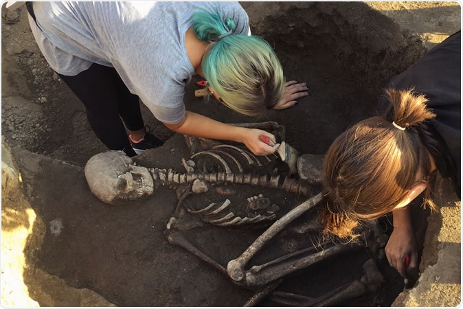Archaeological excavations research on human burial - Image Credit: Masarik / Shutterstock