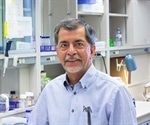 New peptides improve memory in mice with Alzheimer's