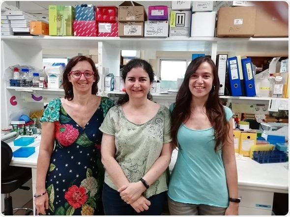 Researchers discover a molecule that regulates tumor development in different types of cancers