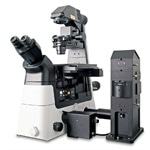 WITec alpha300 Ri - Inverted Raman Imaging Microscope