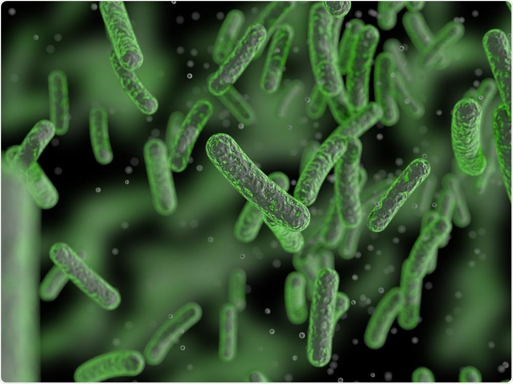 Bacterias en el microbiome de la tripa