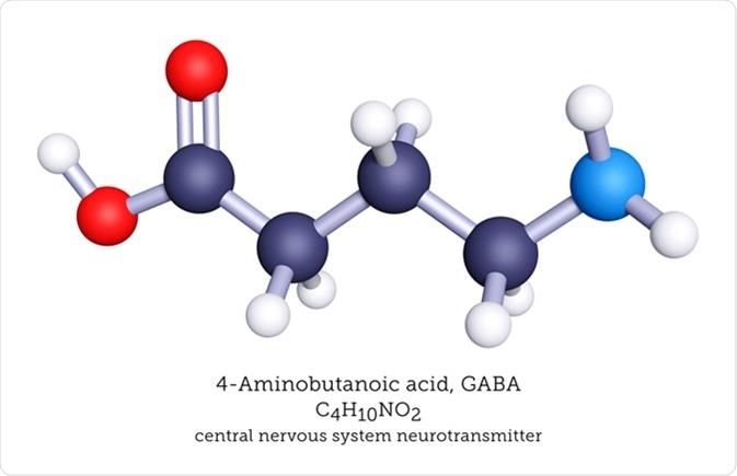 GABA è un neurotrasmettitore inibitorio del sistema nervoso. Credito di immagine: Arti molecolari/Shutterstock