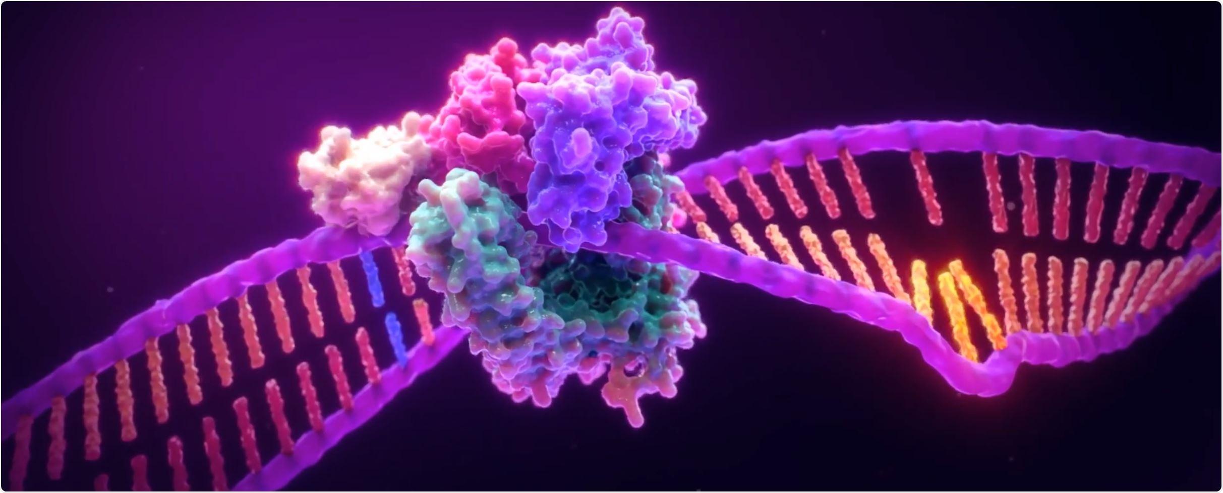 DNA MSI