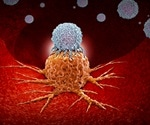 Scientists discover how B-cells in tumor cells promote a favorable immunotherapy response