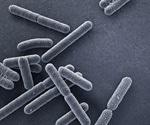 Bandages sense infections, change color, treat infection