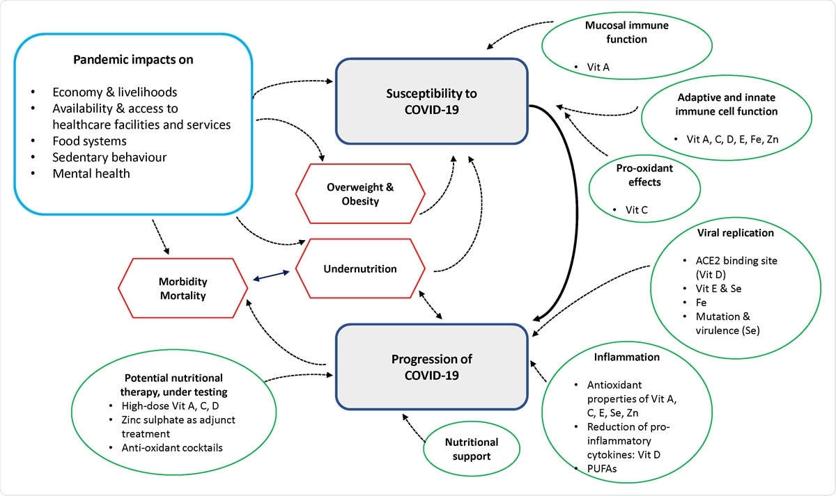 Overview diagram showing key concepts drawn from narrative synthesis