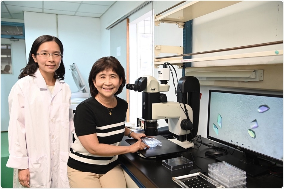 NTHU research could have significant impact on the treatment of dementia