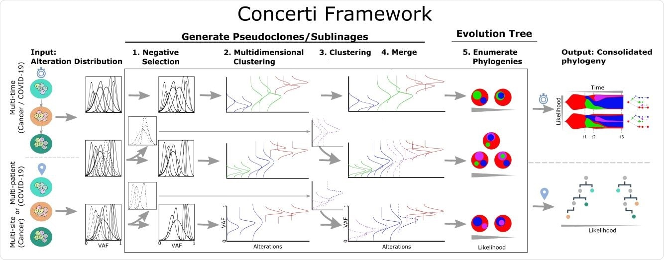 Schematic of the Concerti Framework. Given a set of multi-patient (COVID-19) or multi-site, multi-time (cancer) genomic samples, the algorithm analyzes the underlying alteration frequency distribution as input and performs a (1) negative selection to filter appearing alterations. A (2) multidimensional clustering is done to identify pseudoclones/lineages that will then be enriched by a (3) single sample clustering that (4) merges alterations that were initially negatively selected. (5) All potential phylogenies are generated and assessed for compatibility. Finally the set of consolidated phylogenetic structures over time or site are output with likelihood scores.