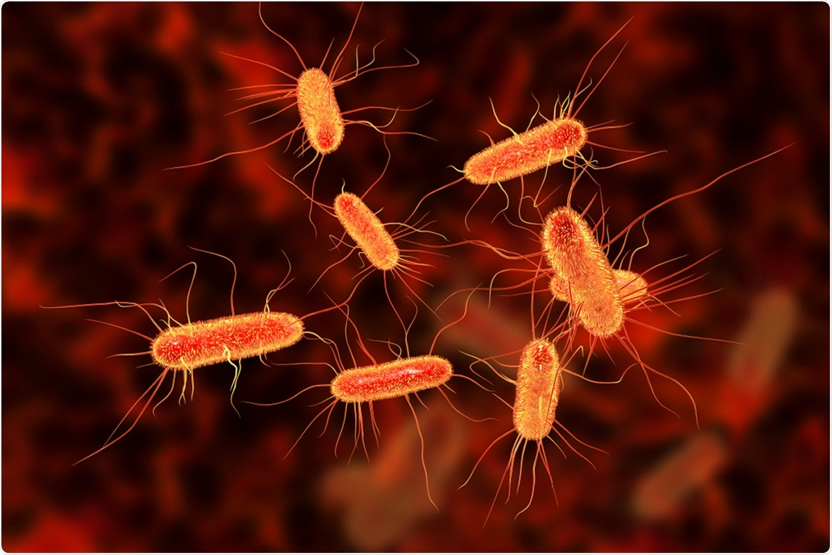 Study: Co-infection in critically ill patients with COVID-19: An observational cohort study from England. Image Credit: Kateryna Kon / Shutterstock