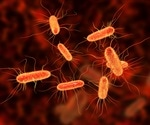 COVID-19 patients at risk of fatal co-infection during ICU stays
