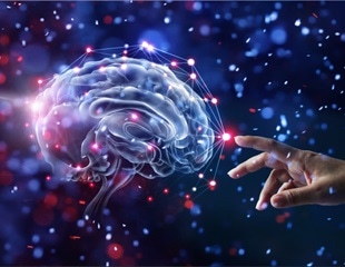 How do low levels of oxygen damage the brain?