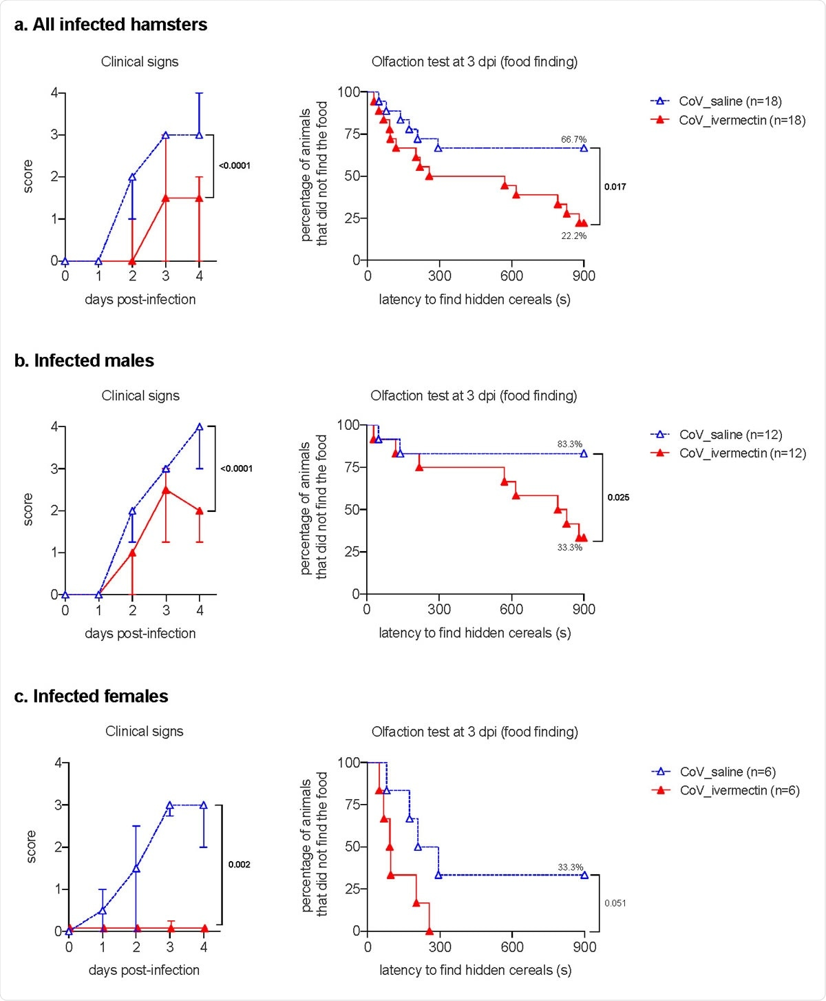 Clinical presentation and olfaction test of SARS-CoV-2-infected hamsters with and without ivermectin treatment. a. clinical signs and olfactory deficit in all infected hamsters. b, clinical signs and olfactory deficit in infected male hamsters only. c, clinical signs and olfactory deficit in infected female hamsters only. The clinical score is based on a cumulative 0-4 scale: ruffled fur; slow movements; apathy; stress when manipulated. The olfaction test is based on the buried food finding test. Curves represent the percentage of animals that did not find the buried food. Food finding assays were performed at 3 days post-infection. Mann-Whitney test at 4 dpi (clinical signs) and Log rank (Mantel-Cox) test (olfaction tests). The p value is indicated in bold when significant at a 0.05 threshold. Symbols indicate the median ± interquartile range. Data were obtained from three independent experiments for males and two independent experiments for females.