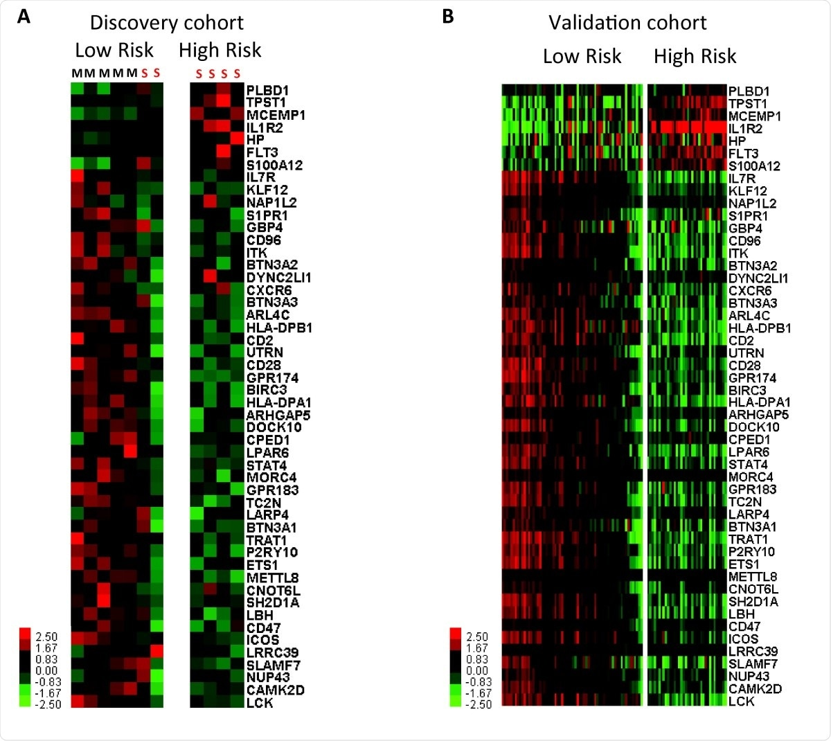 Genomic risk profiles based on the 50-gene signature are predictive of poor outcomes in SARSCoV- 2. Clustering of SARS-CoV-2 infected individuals based on genomic risk profiles (high vs low) derived from the 50-gene signature using SAMS in discovery (A) and validation cohorts (B). Every column represents a subject and every row represents a gene. Log-based two color scale is shown next to heatmaps; red denotes increase expression over the geometric mean of samples and green, decrease.