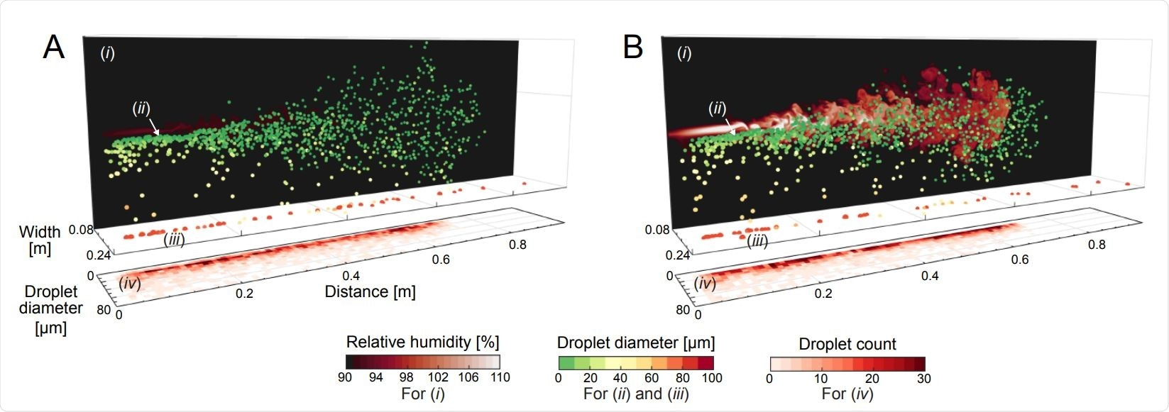 Flow visualisation snapshots from our direct numerical simulations of water droplets in a warm humid puff in ambient air at (A) θamb = 30◦C and (B) θamb = 10◦C, both at RHamb = 90%. Corresponding movies can be seen in Movies S1 and S2. The snapshots show (i) vertical 2D planes of the local RH fields, (ii) the instantaneous droplets spatial distribution, (iii) the heavy large droplets which already fell on the ground, and (iv) the instantaneous droplet size histograms versus distance. The local RH planes are taken from the vertical mid-plane of the puff and are plotted on the background for clarity. Droplets are colour coded by their instantaneous sizes. Initial droplet sizes are prescribed with a distribution similar to J. P. Duguid (13) (plotted in Fig. S2) and are injected evenly in time with the same local inflow velocity. The initial temperature of the droplets and puff is 34◦C. Both snapshots are taken at 0.6s corresponding to the cut-off time of the puff. In the colder conditions of (B), the expelled humid puff over-saturates (seen as the lighter colored RH field and visible in Movie S2), which in turn dictates growth of smaller droplets caught within the puff. Correspondingly, the droplet counts are confined within a narrower range of sizes in (B) as compared to (A),