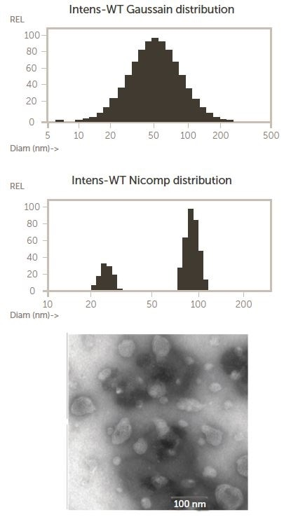 Nicomp and TEM results for an LCNP dispersion, copied with rights from 4