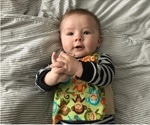 Early life language exposure shapes infant brain function and development