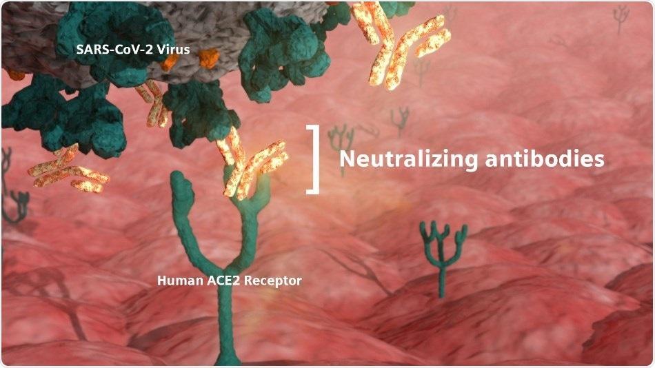 Siemens Healthineers SARS-CoV-2 IgG antibody test demonstrates ability to detect neutralizing antibodies