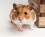 Nafamostat mesylate initially reduces SARS-CoV-2 viral loads in hamsters, study finds