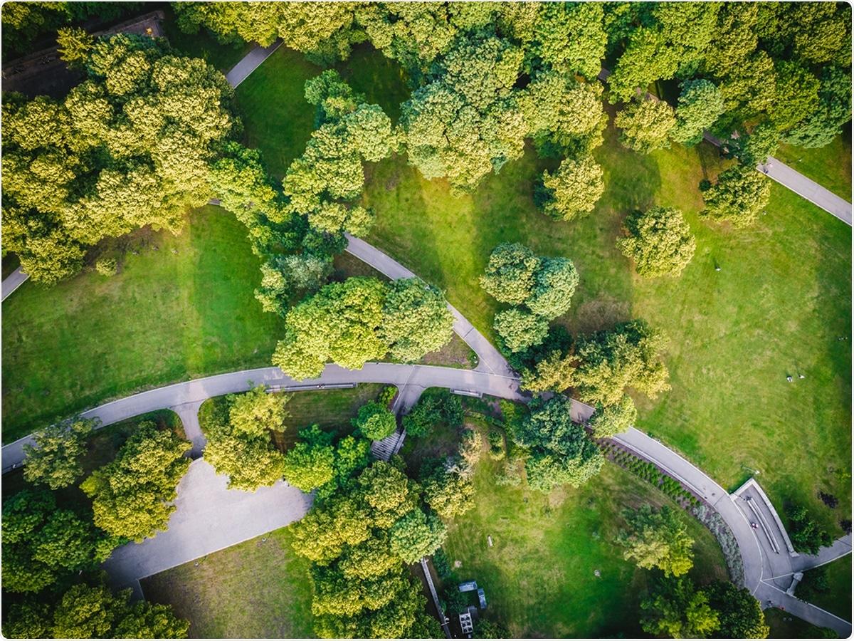 Estudo: A exposição às bactérias transportadas por via aérea depende em cima da complexidade vertical da estratificação e da vegetação. Crédito de imagem: Aleksandrs Muiznieks/Shutterstock