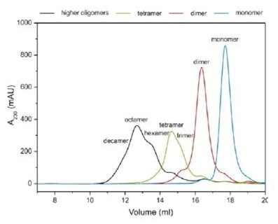 Size Exclusion Chromatography (Soluble Aggregates) with UV Detection.