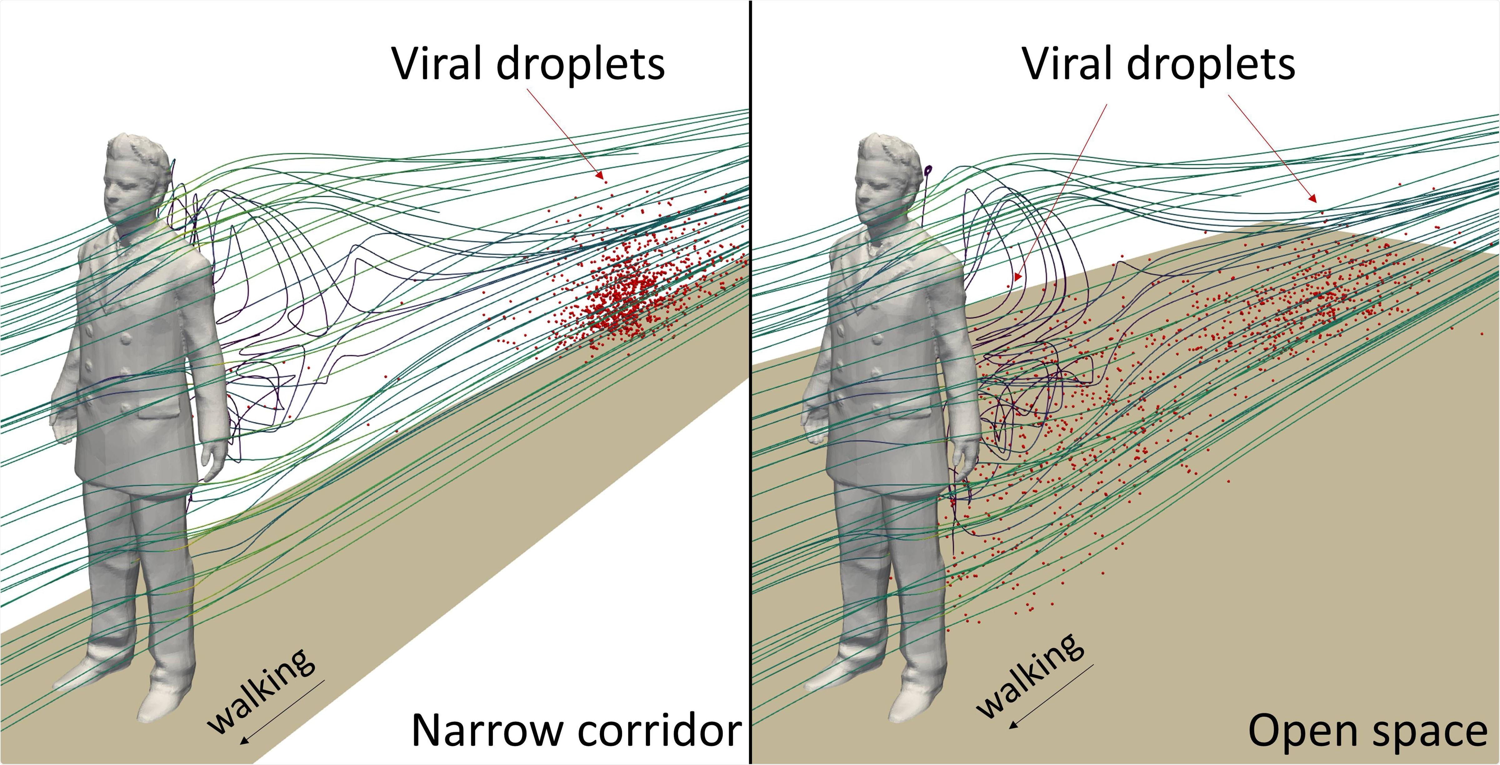 Diffusione del virus