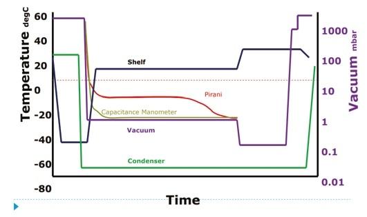 Pirani v Capacitance Manometer.